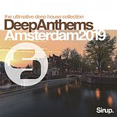 Sirup Deep Anthems Amsterdam 2019 von Various Artists