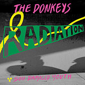 Radiation by The Donkeys