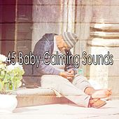 45 Baby Calming Sounds de White Noise Babies