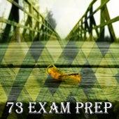 73 Exam Prep de Meditación Música Ambiente