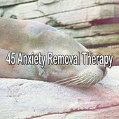 45 Anxiety Removal Therapy by Trouble Sleeping Music Universe