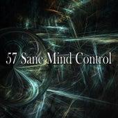 57 Sane Mind Control by Zen Music Garden