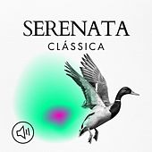 Serenata Clássica von Various Artists
