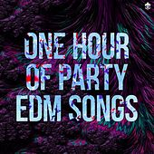 One Hour of Party EDM Songs von Various Artists
