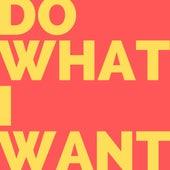 Do What I Want de WizTheMc