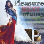 Pleasure Best of 2013 by Various Artists