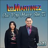 Que Voy Hacer Sin Ti, Vol. 23 de Los Hermanos Martinez de El Salvador