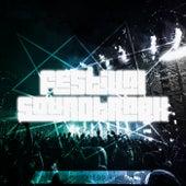 Festival Soundtrack - Best of Big Room & Electro, Vol. 19 de Various Artists