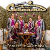 Mitades de un Corazón by Grupo Checame
