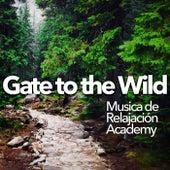 Gate to the Wild de Musica de Relajación Academy