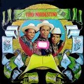 Montanha Russa von Trio Nordestino