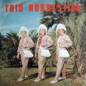 Trio Nordestino von Trio Nordestino