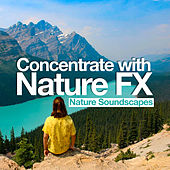 Concentrate with Nature FX von Nature Soundscapes