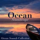 Complete Ocean Soundscape de Ocean Sounds Collection (1)