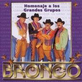 Homenaje A Los Grandes Grupos de Bronco