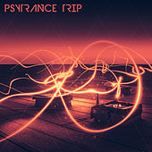 PsyTrance Trip von Various Artists