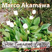 How Can I Let You Go (In Concert) by Marco Akamawa