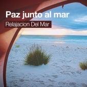 Paz junto al mar de Relajacion Del Mar