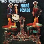 Forró Pesado von Trio Nordestino