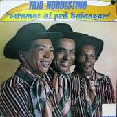 Estamos Ai pra Balançar von Trio Nordestino