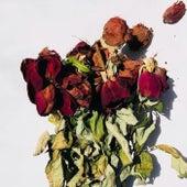 Flowers Bloomed In The Trash von Ikuko Morozumi