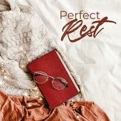 Perfect Rest: Instrumental Jazz Music Ambient, Smooth Jazz for Relaxation, Reduce Stress, Jazz After Work de The Jazz Instrumentals