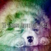 31 Storms Intuitive Peace de Thunderstorm Sleep