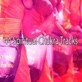44 Spiritual Chakra Tracks von Massage Therapy Music