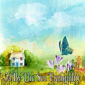 54 By the Sea Tranquility by Lullaby Land
