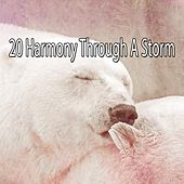 20 Harmony Through a Storm by Rain Sounds and White Noise