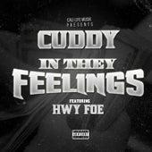 In They Feelings (feat. Hwy Foe) by Cuddy