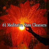 61 Meditative State Cleansers de Zen Meditation and Natural White Noise and New Age Deep Massage