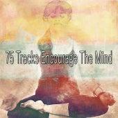 75 Tracks Encourage the Mind von Yoga Music
