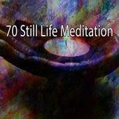 70 Still Life Meditation de Japanese Relaxation and Meditation (1)
