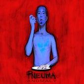 Anomaly by Pneuma