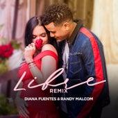 Libre (Remix) de Diana Fuentes