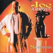 Sus Razones Tendrá de Joe Arroyo