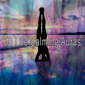 50 Life Calming Auras von Massage Therapy Music