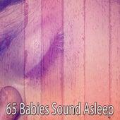 65 Babies Sound Asleep von Best Relaxing SPA Music