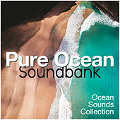 Pure Ocean Soundbank by Ocean Sounds Collection (1)