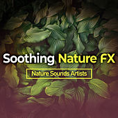 Soothing Nature FX de Nature Sounds Artists