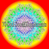 70 Soul Sound Supplements de White Noise Research (1)