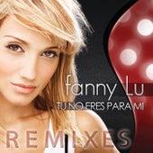 Tú No Eres Para Mi (Remixes) by Fanny Lu