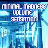 Minimal Madness Sensation, Vol.1 (BEST SELECTION OF MINIMAL CLUB TRACKS) by Various Artists