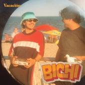 Bichi by Vacación