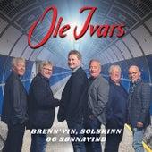 Brenn'vin, solskinn og sønnavind by Ole Ivars