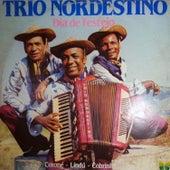 Dia de Festejo von Trio Nordestino