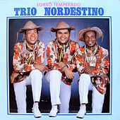 Forró Temperado von Trio Nordestino