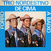 Forro de Cima a Baixo von Trio Nordestino