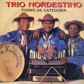 Forró de Categoria von Trio Nordestino